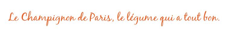 www.champignonidee.fr
